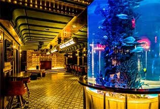 Fishbowl at Dream Hotel NYC